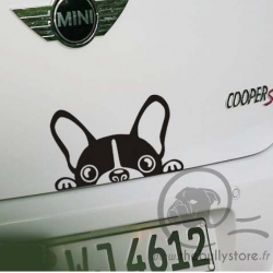 Sticker voiture Bouledogue Francais