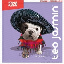 Calendrier Téo Jasmin 2020