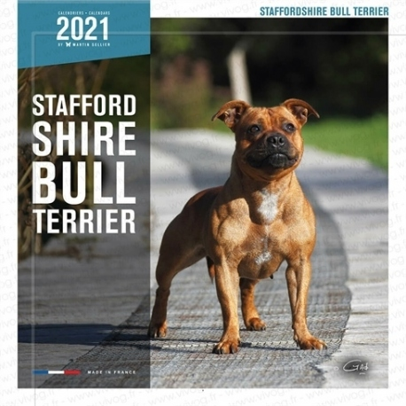 Calendrier 2020 Stafford Shire Bull Terrier
