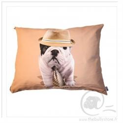 Pillow Teo Jasmin Giorgio